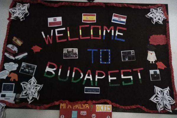 Działania projektowe na Węgrzech