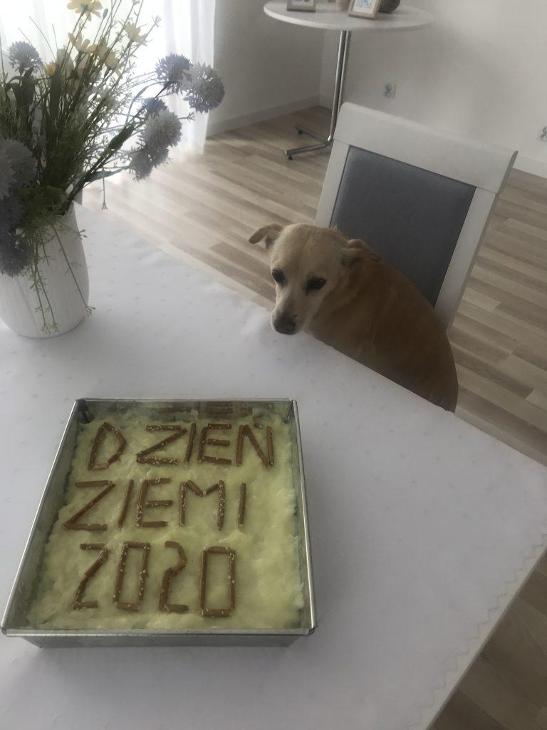 Dzień Ziemi 2020